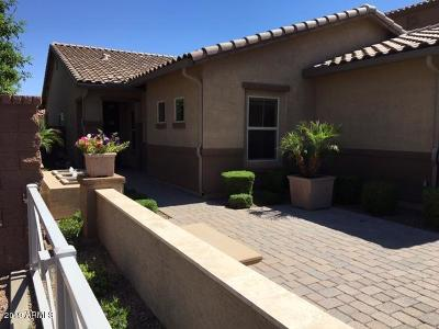 Queen Creek Single Family Home For Sale: 412 W Lyle Avenue