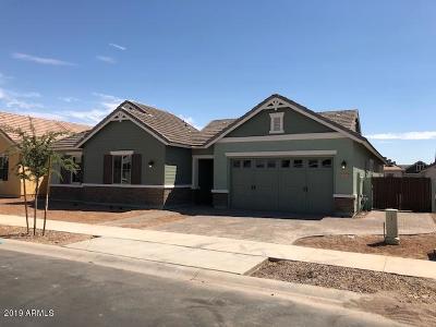 Gilbert Single Family Home For Sale: 4427 E John Street