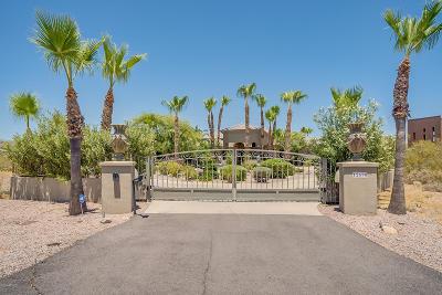 Scottsdale Single Family Home For Sale: 12690 E Cochise Drive