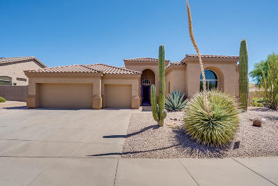 Scottsdale Single Family Home For Sale: 13562 E Thoroughbred Trail