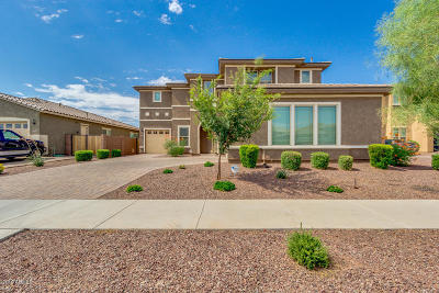 Queen Creek Single Family Home For Sale: 20252 E Quintero Road