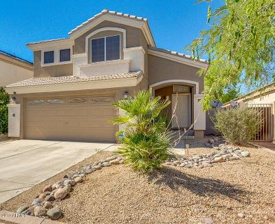 Goodyear Single Family Home For Sale: 13606 W Desert Flower Drive