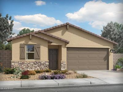 San Tan Valley Single Family Home For Sale: 4254 W Coneflower Lane