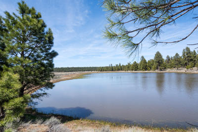 Coconino County Residential Lots & Land For Sale: Forest Service 140 Road Road