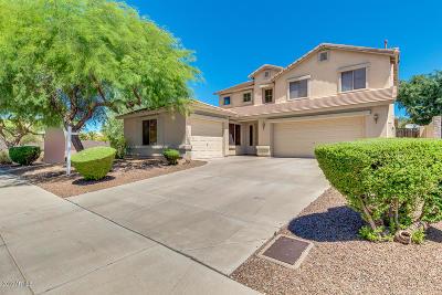 Phoenix Single Family Home For Sale: 3524 W Alyssa Lane