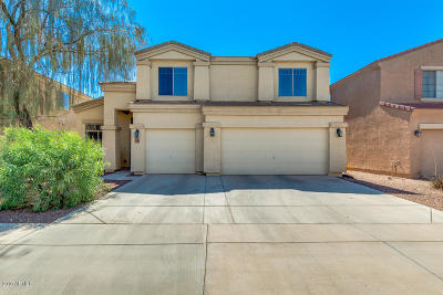 Maricopa Single Family Home For Sale: 19118 N San Juan Street