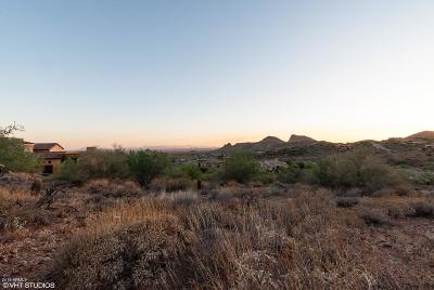 Fountain Hills Residential Lots & Land For Sale: 9912 N Canyon View Lane