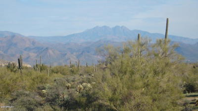 Scottsdale Residential Lots & Land For Sale: Xxx E Montello Road