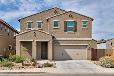 Phoenix Single Family Home For Sale: 2934 W Laredo Lane