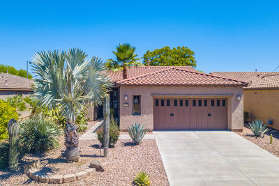 Trilogy At Vistancia Single Family Home For Sale: 12368 W Hedge Hog Place