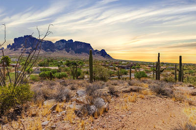 Apache Junction Residential Lots & Land For Sale: 3270 N Val Vista Road