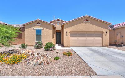 Casa Grande Single Family Home For Sale: 194 N Agua Fria Lane
