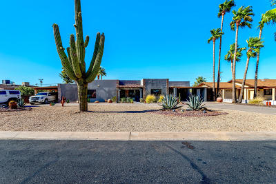Phoenix Single Family Home For Sale: 410 E Thunderbird Trail