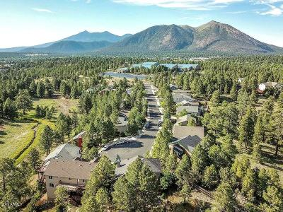Flagstaff Single Family Home For Sale: 920 N Sinagua Heights Drive