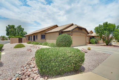 Peoria Single Family Home UCB (Under Contract-Backups): 20304 N 106th Avenue