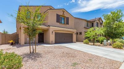 Maricopa Single Family Home For Sale: 38071 W Santa Clara Avenue