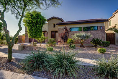 Chandler Single Family Home For Sale: 3808 E Lynx Place