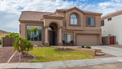 Phoenix Single Family Home For Sale: 6405 W Hackamore Drive