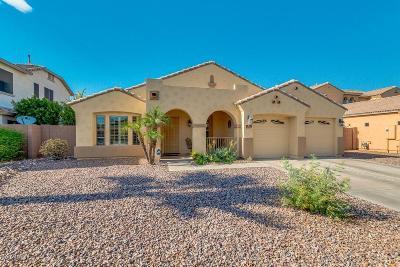 Gilbert Single Family Home For Sale: 3478 E Fairview Street