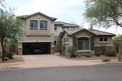 Phoenix Single Family Home For Sale: 3025 W Sentinel Rock Road
