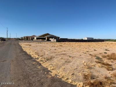 Goodyear Residential Lots & Land For Sale: 47xx S 179th Drive
