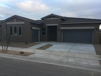 Queen Creek Single Family Home For Sale: 23112 E Poco Calle