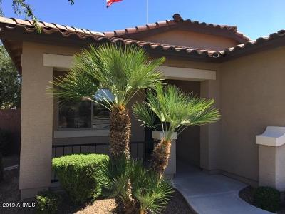 Queen Creek Single Family Home For Sale: 360 W Lyle Avenue