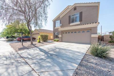 Maricopa Single Family Home For Sale: 37060 W Amalfi Avenue