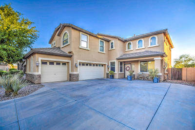 Queen Creek Single Family Home For Sale: 34718 N Mirandesa Drive