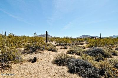 Scottsdale Residential Lots & Land For Sale: 24355 N 91st Street