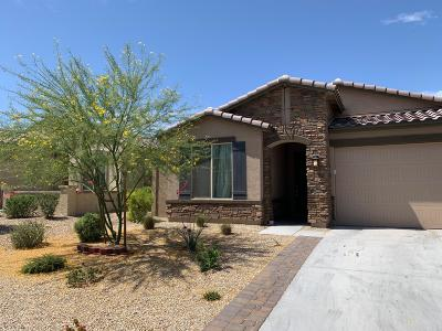 Goodyear Single Family Home For Sale: 10810 S 175th Drive