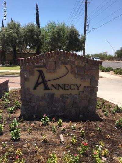 Mesa AZ Single Family Home For Sale: $720,000