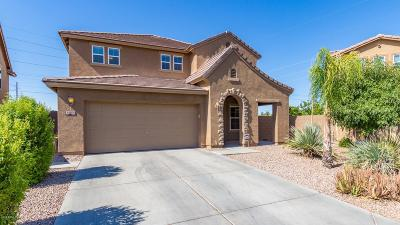San Tan Valley Single Family Home For Sale: 1353 E Mayfield Drive