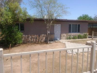 Phoenix Single Family Home For Sale: 2326 E Nancy Lane