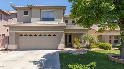 Goodyear AZ Single Family Home For Sale: $270,000