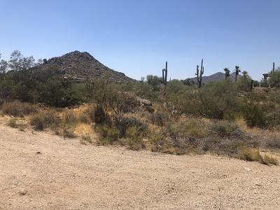 Scottsdale Residential Lots & Land For Sale: 8082 E Dove Valley Road