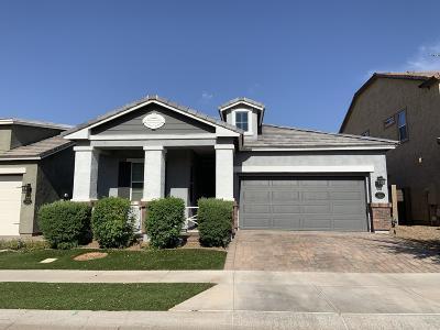 Mesa Single Family Home For Sale: 2624 S Rose Garden