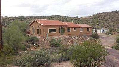 New River AZ Single Family Home For Sale: $390,000