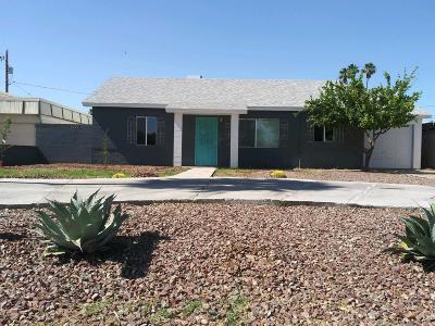 Phoenix Single Family Home For Sale: 1138 E Dunlap Avenue