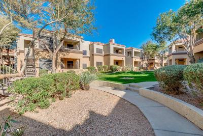 Scottsdale Apartment For Sale: 11375 E Sahuaro Drive #1095