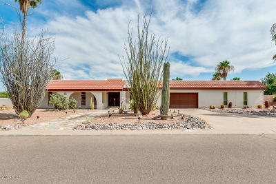 Fountain Hills Single Family Home For Sale: 17205 E Parlin Drive