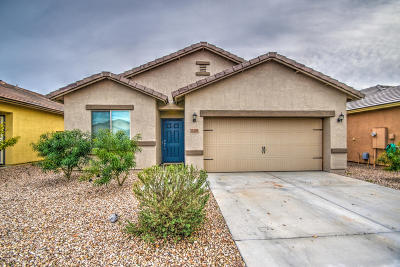 Florence Single Family Home For Sale: 13283 E Tumbleweed Lane