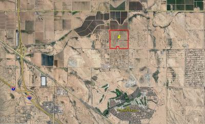 Residential Lots & Land For Sale: S Toltec Buttes Road