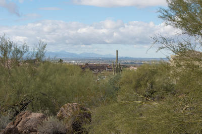 Mesa Residential Lots & Land For Sale: 3518 N Shadow Trail