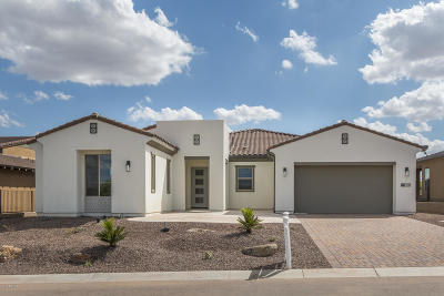 Rio Verde Single Family Home For Sale: 17237 E Fort Verde Road