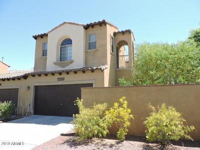 Buckeye Single Family Home For Sale: 21182 W Sunrise Lane