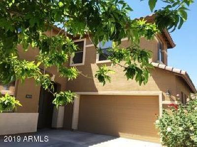 Chandler Rental For Rent: 3675 E Bluebird Place