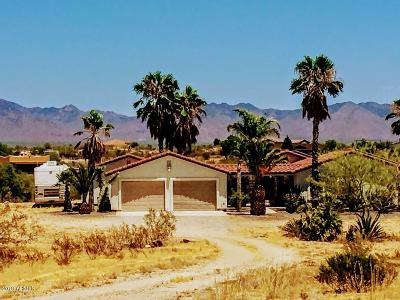 Single Family Home For Sale: 35395 S Us Highway 93