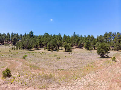 Residential Lots & Land For Sale: 2083 Crimson Road