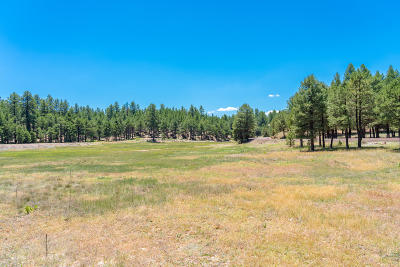 Residential Lots & Land For Sale: 1897 Crimson Road